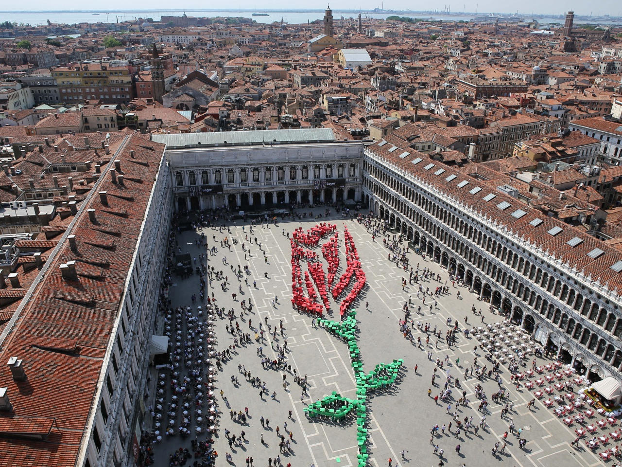 View of St. Mark's square