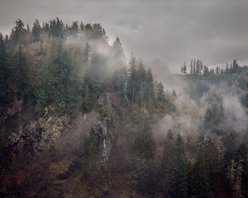 Snoqualmie Evergreens