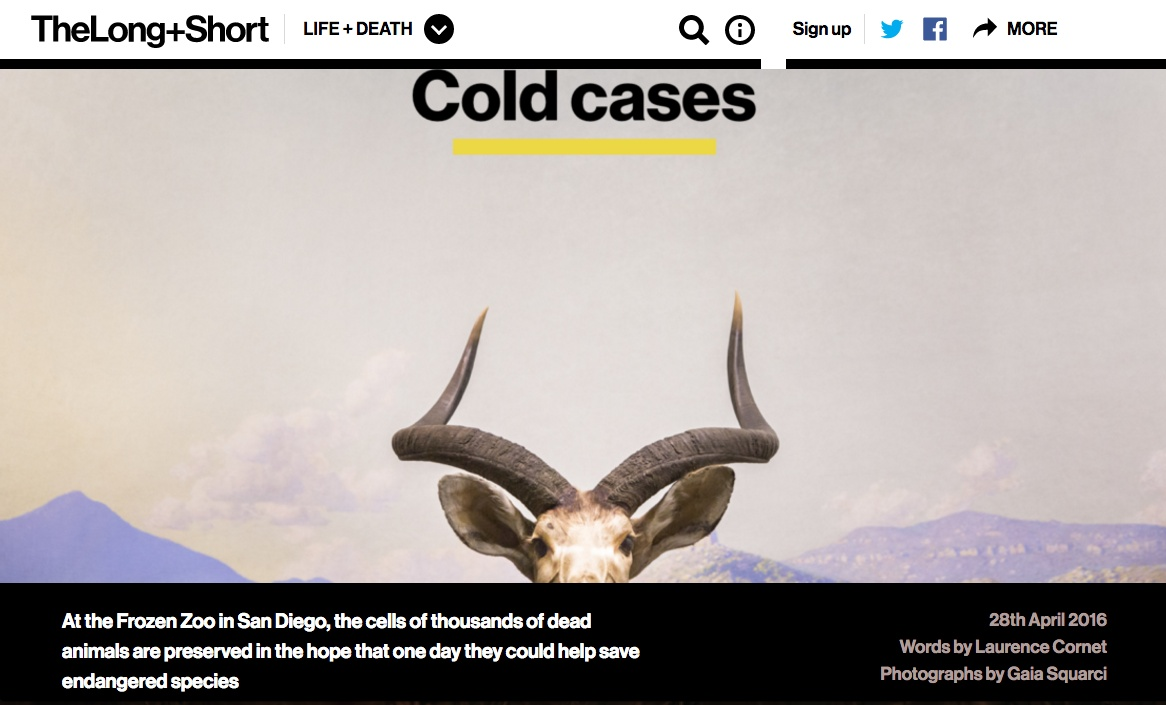 Cold Cases - San Diego Frozen Zoo