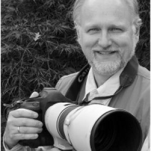 Bob Demchuk
