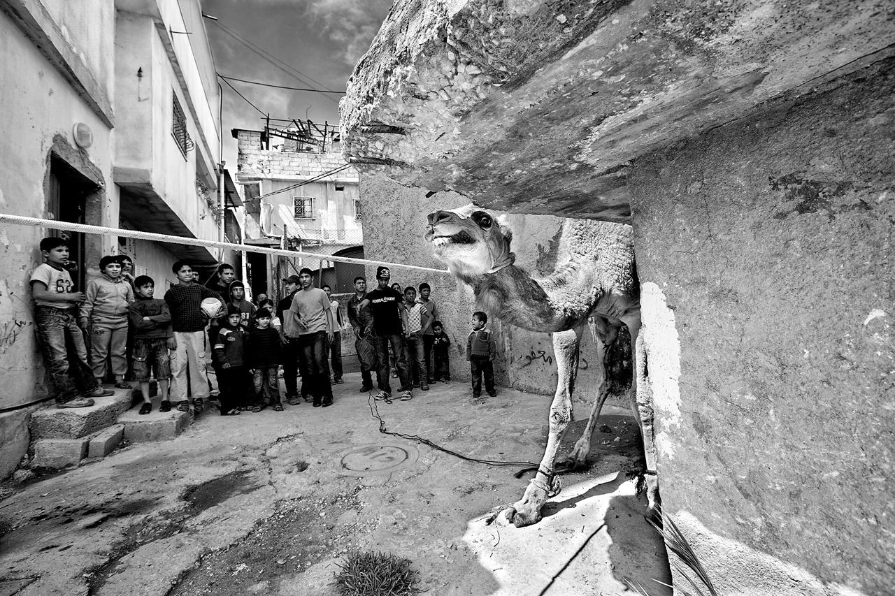 West Bank 2011