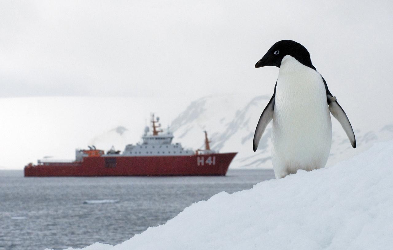 Brazilian Antarctic Project