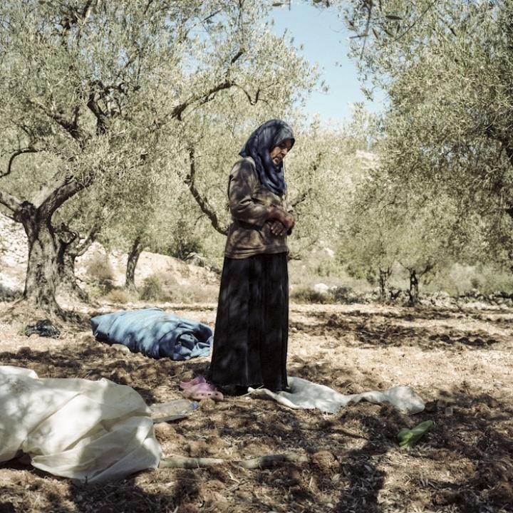 Battir - the green intifada