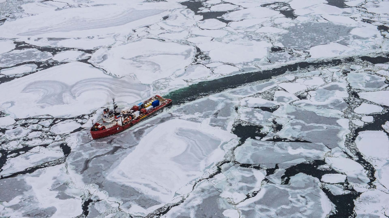 Arctic, Barentsevo sea
