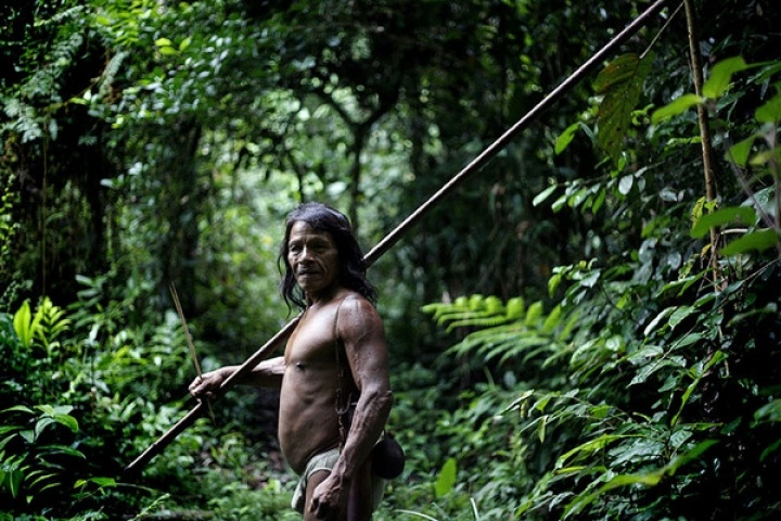 Warriors of the Amazon