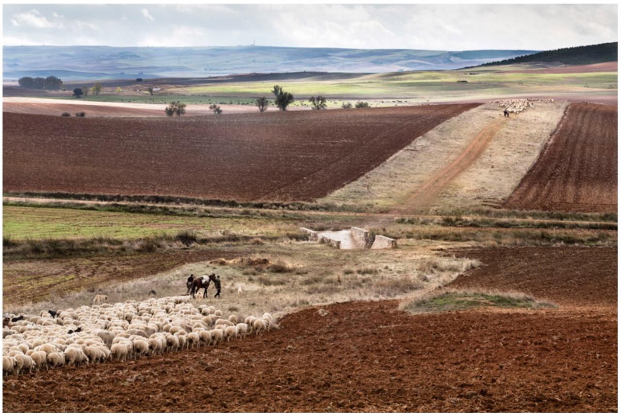 Spanish nomads