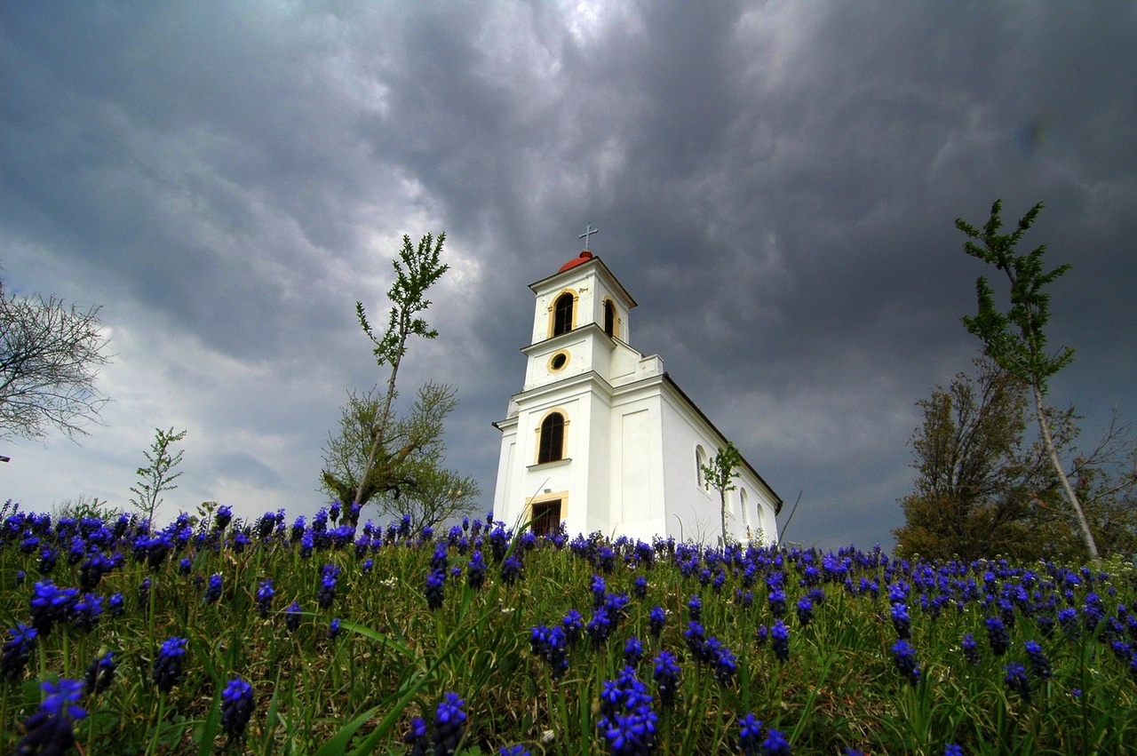 Church with blue flowers