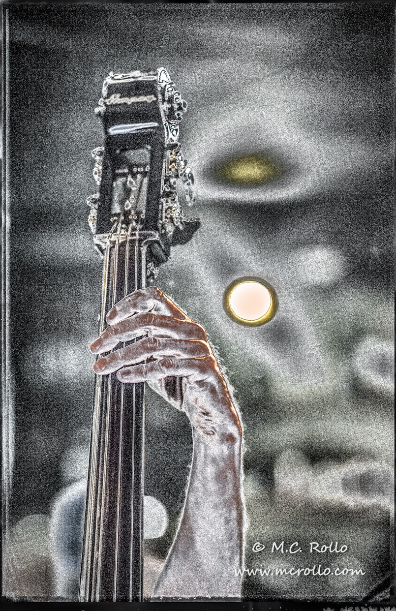Hand on Neck of Upright Bass