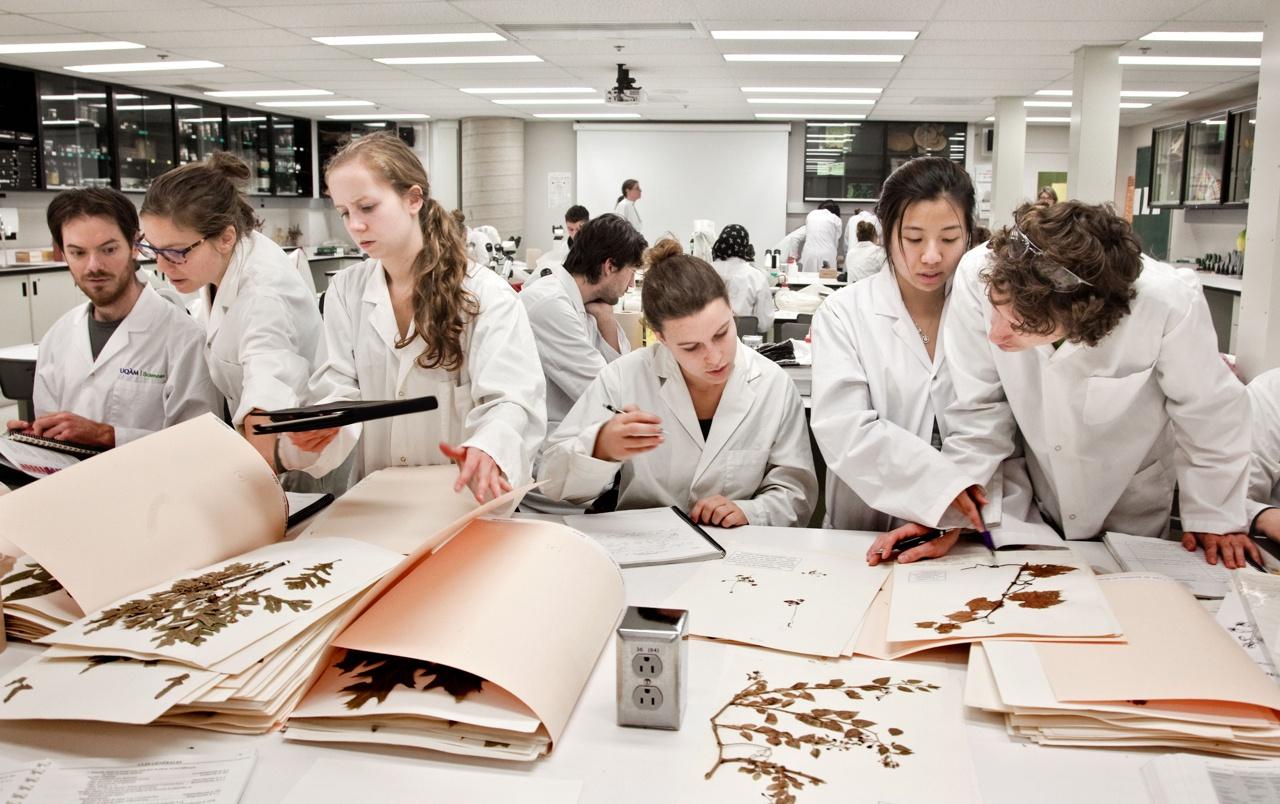 Biology class, Université du Québec à Montréal