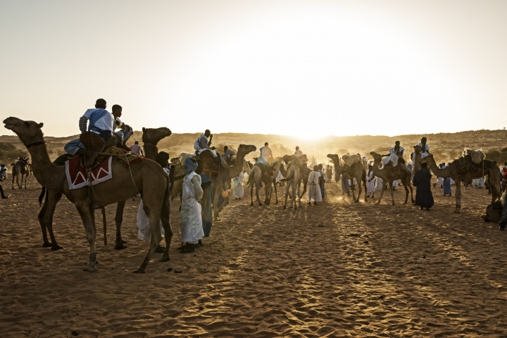 Before the camel race, Oualata, Mauritania, Jan14