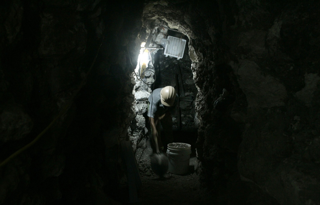 Trekking into Mayan History