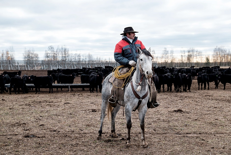 A story about American cowboys in Russia
