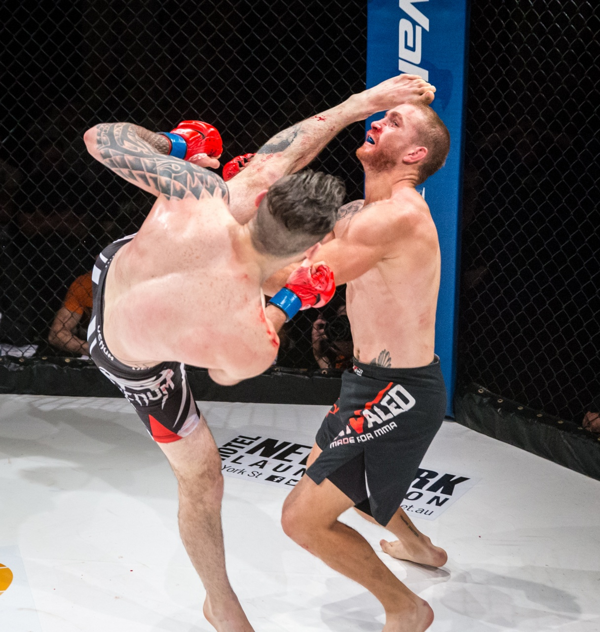Adam Trickey vs David Butt