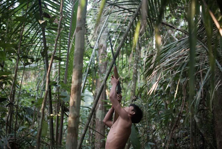 Munduruku Resistance