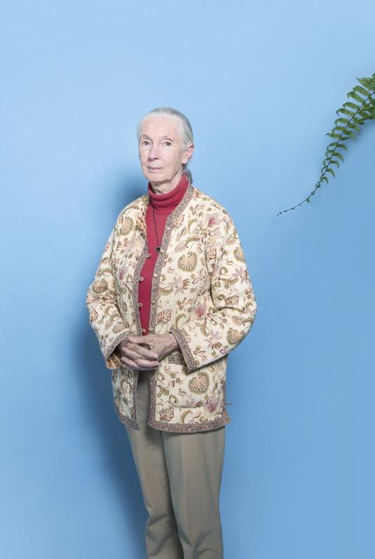 Jane Goodall, primatologist