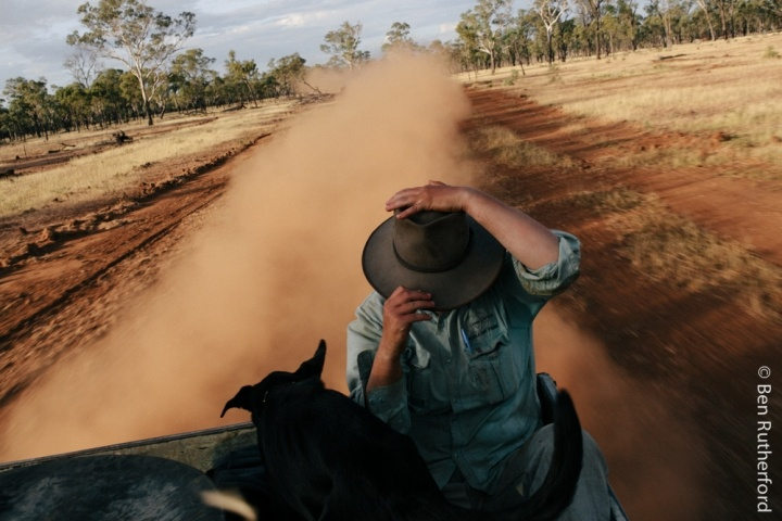 Izzy en route to work. Western QLD. 2015
