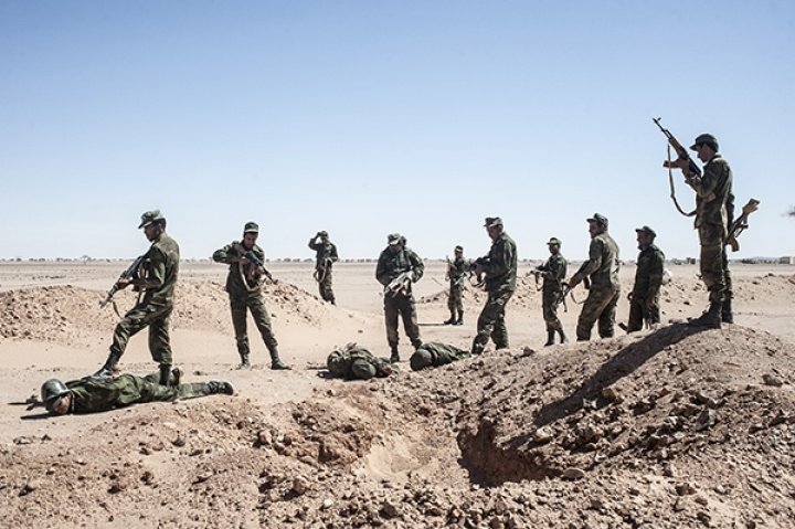 Polisario against yihad