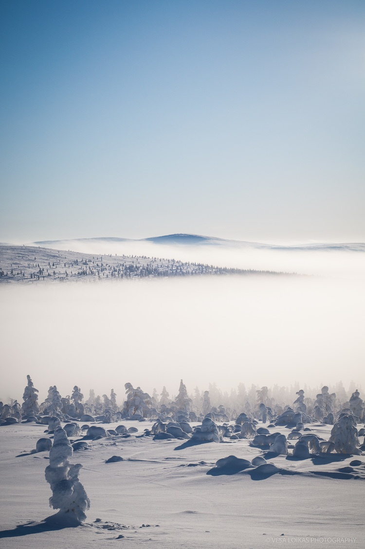 HIGH TUNDRA - Lapland, Finland
