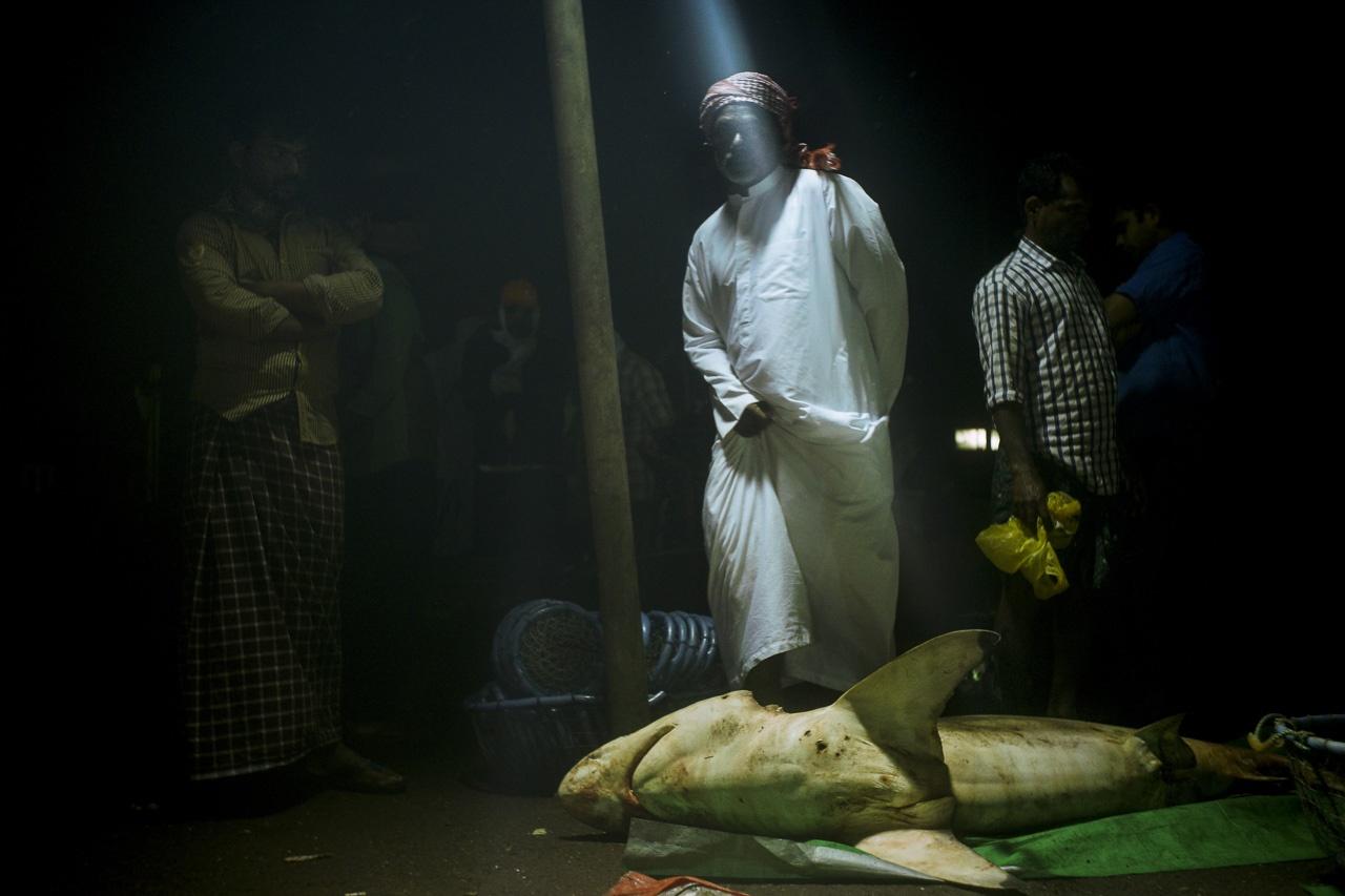 Abu Dhabi Fishermen