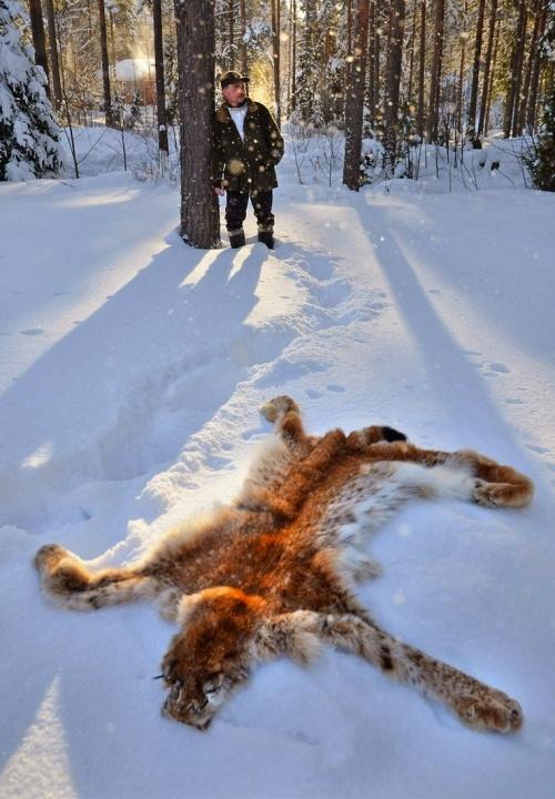 Shooting rare animals