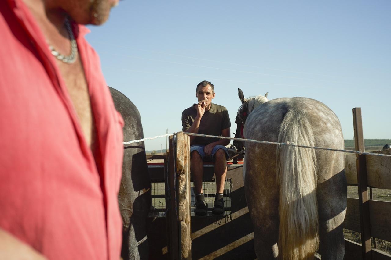 Horses race in Cimişlia