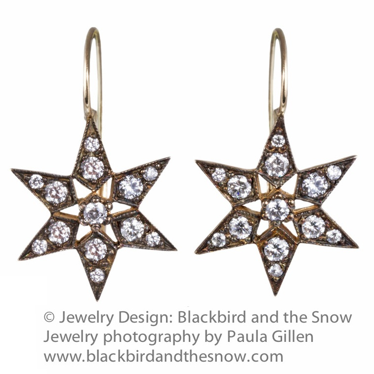 Jewelry Photograph for Blackbird And the Snow