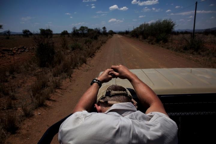 Big Game Breeding in South Africa 02