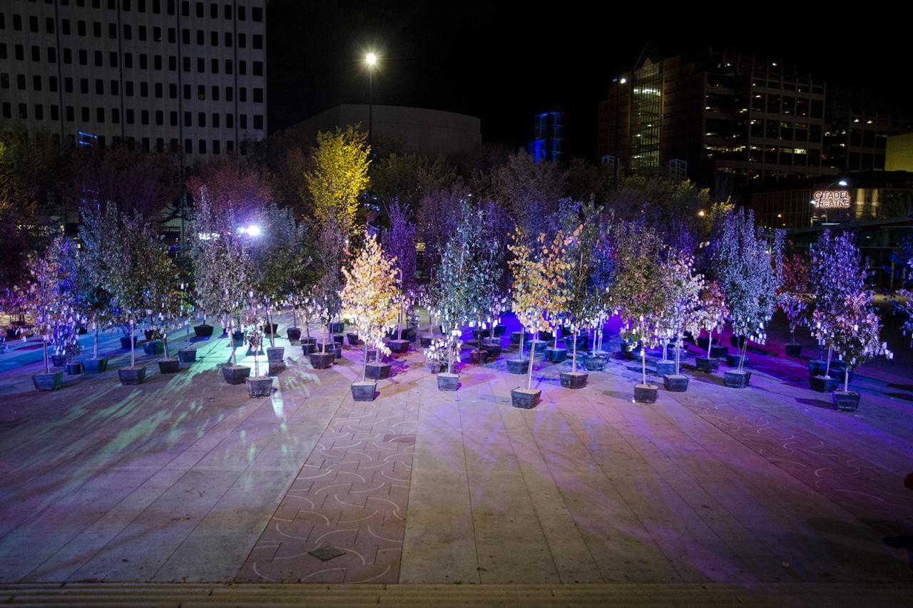 Wish Tree - Yoko Ono