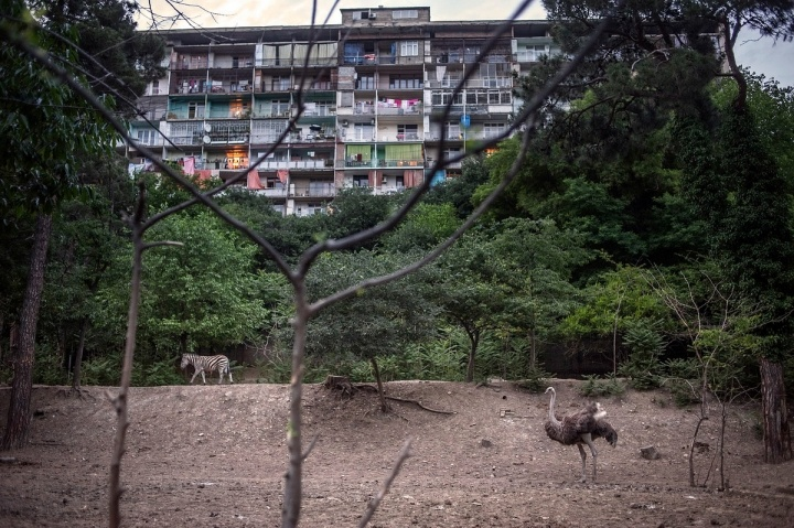 From the Black Sea series, Tbilisi