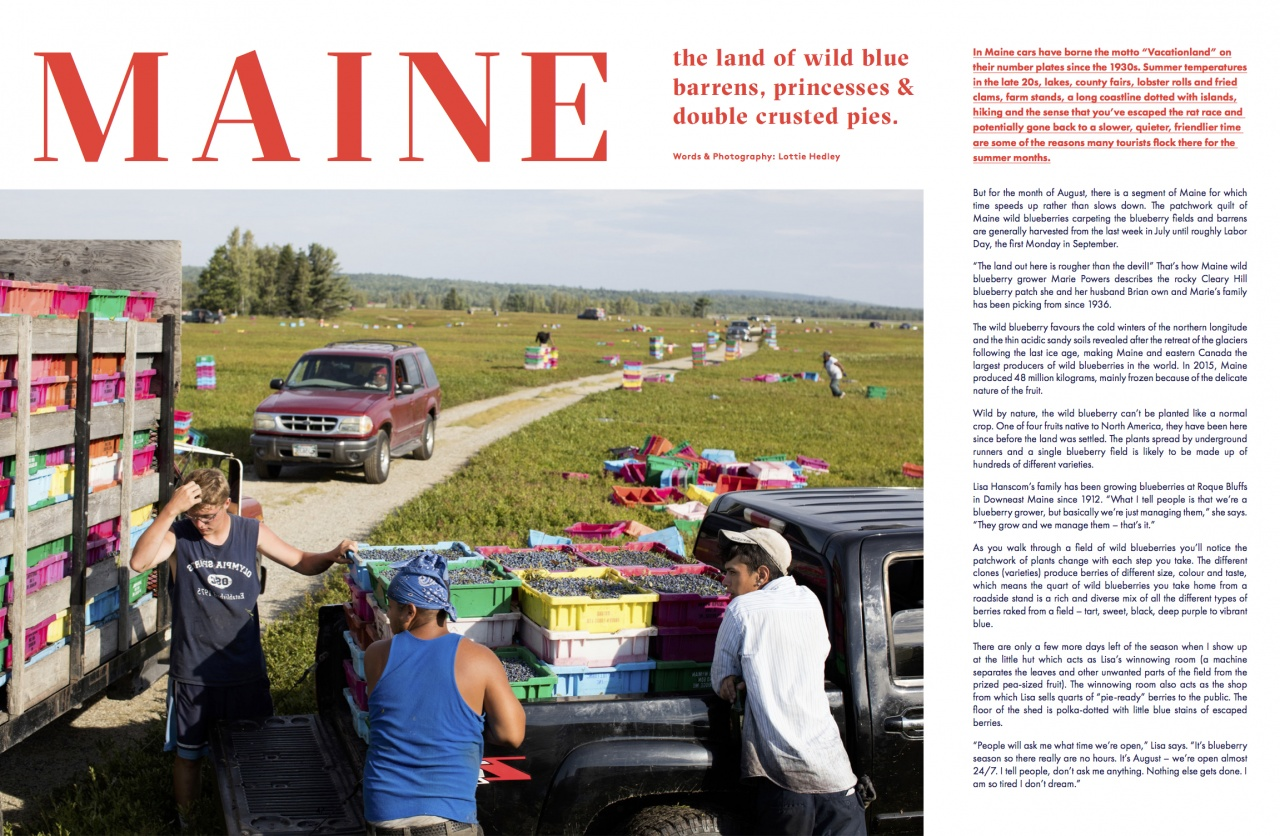 Maine for Stone Soup