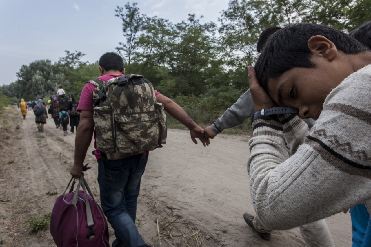 Migrants at the Serbia-Hungary border