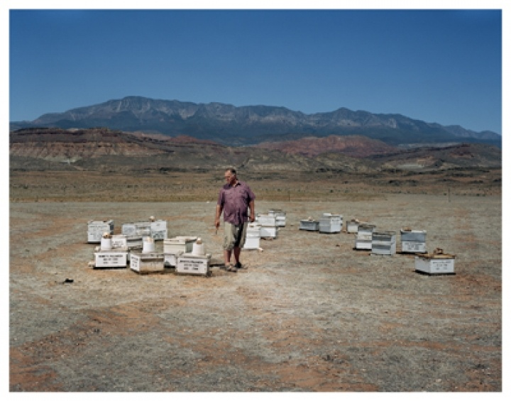 Beekeeping in the 21st Century