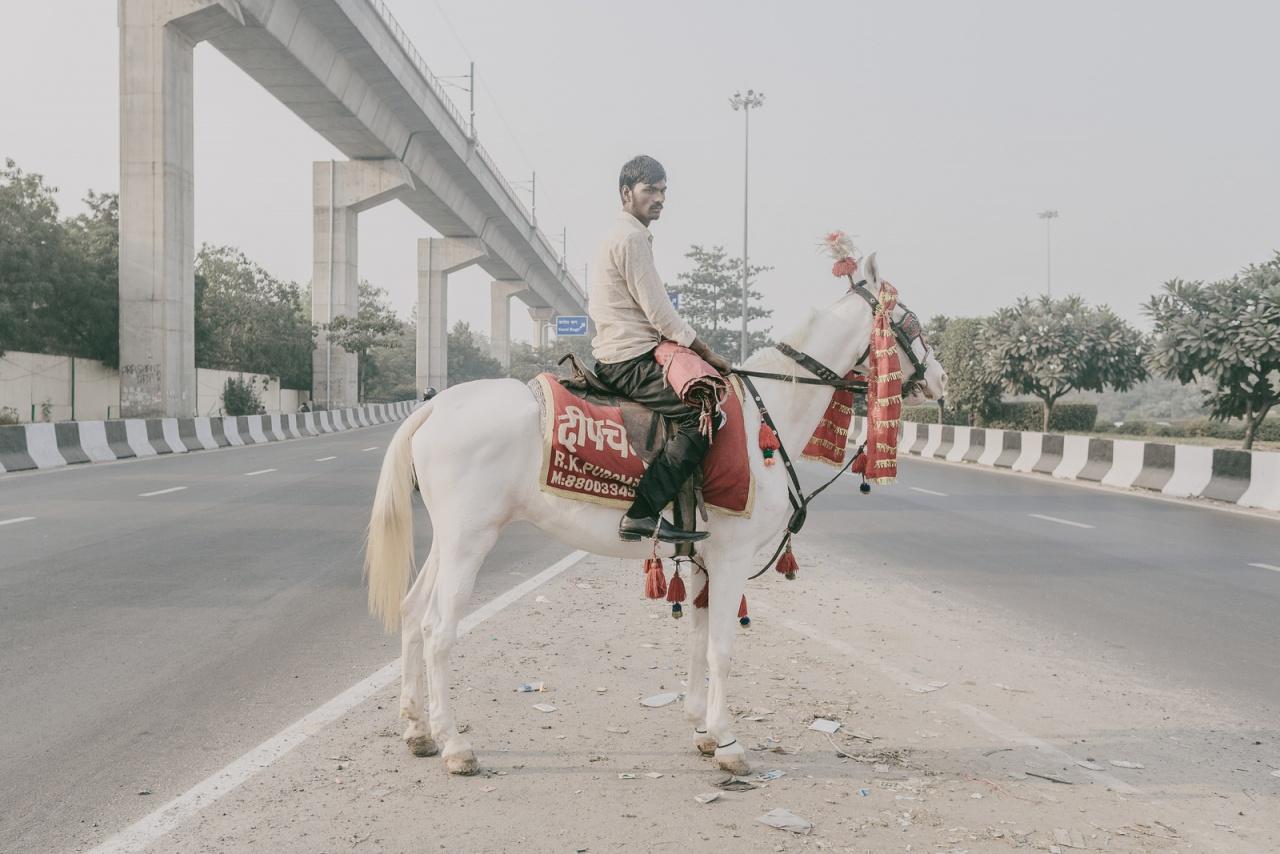 Delhi's Horesman